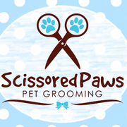 Cat grooming in Manly