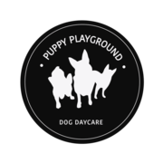 Dog Day Care Services Sydney