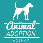 Animal Adoption Agency