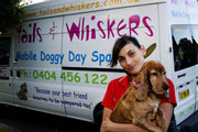Tails and Whiskers Your Mobile Dog and Cat Day Spa!